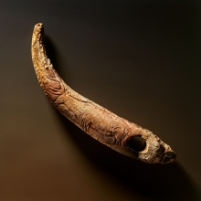 Bastón Prehistórico